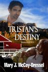 cowboy boss and his destiny, western romance, mary j mccoy-dressel, cowboys, series,