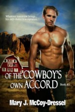 double dutch Ranch Series: Love at First Sight, Mary J McCoy-Dressel, Blog post snippet