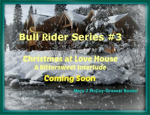 Bull Rider Series #3