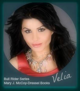 Bull Rider Series, Howdy, Ma'am