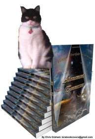 Crystal Atonement book stack