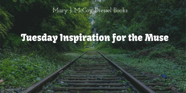 Mary J McCoy-Dressel Books