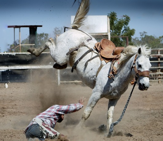 Mary J. McCoy-Dressel, western romance, rodeo, blogging, pixabay