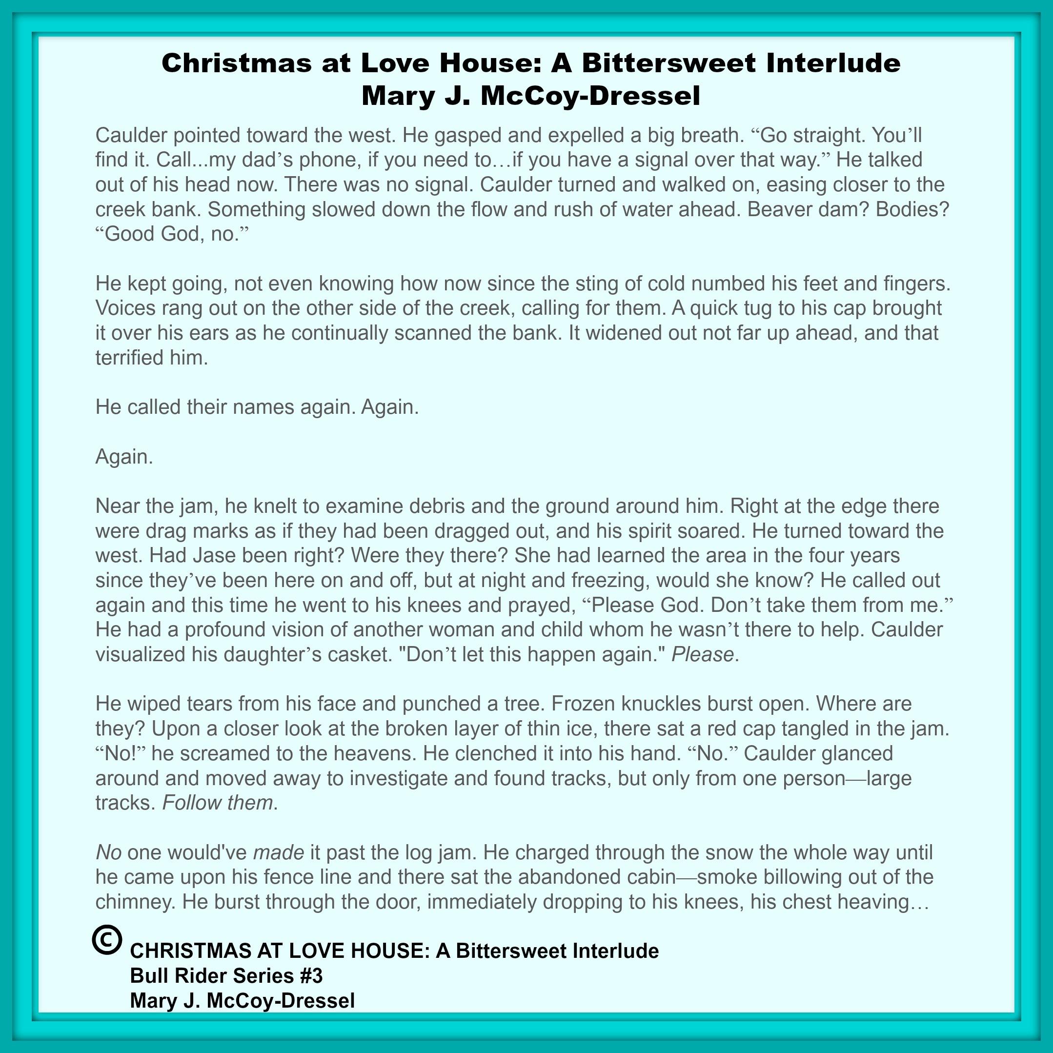 Mary J McCoy-Dressel, western romance, blog post Christmas at Love House, Bull Rider Series 3,