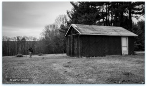 country pole barn garage, Pennsylvania, black and white, forest behind barn, Mary J McCoy-Dressel, blog post country or city