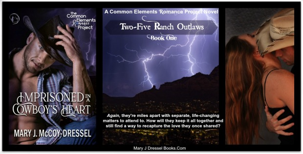 The Common Elements Romance Project, Imprisoned in a Cowboy's Heart, Mary J McCoy-Dressel, second chance romance, contemporary western romance