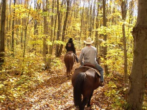 man and woman riding a horse down a path surrounded with autumn trees, Mary J McCoy-Dressel, western romance