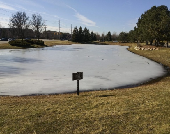 frozen pond, warning sign, Prohibited, No skating, No swimming, Mary J McCoy-Dressel, blog post Wordless Wednesday