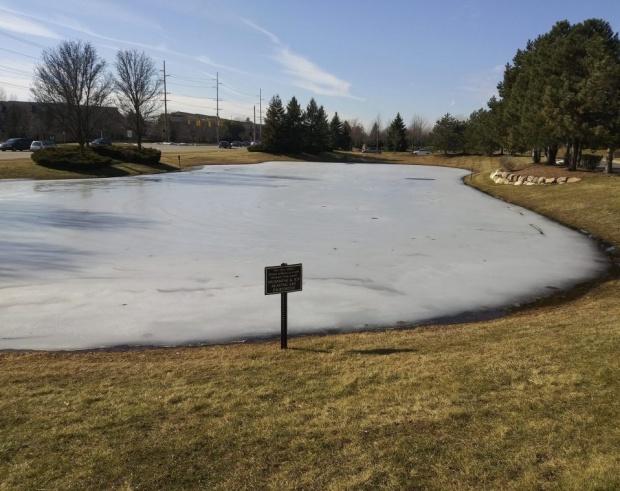 frozen pond, warning sign, Prohibited, No skating, No swimming, Mary J McCoy-Dressel, blog post Wordless Wednesday
