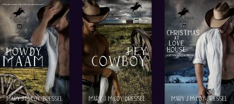Mary J McCoy-Dressel books, brand-new Bull Rider Series Cover banner 2021, cowboys, western setting, snow